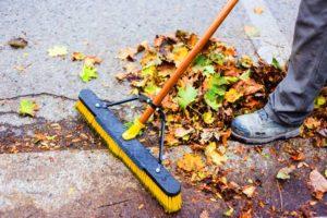 Garden-Cleanup
